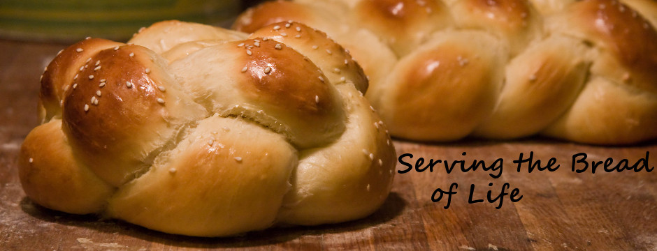 Catering Melbourne, FL | Brevard County Caterer | Any